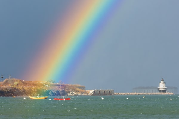 Rainbow At Spring Point Ledge Photography Art | Jesse MacDonald Photography
