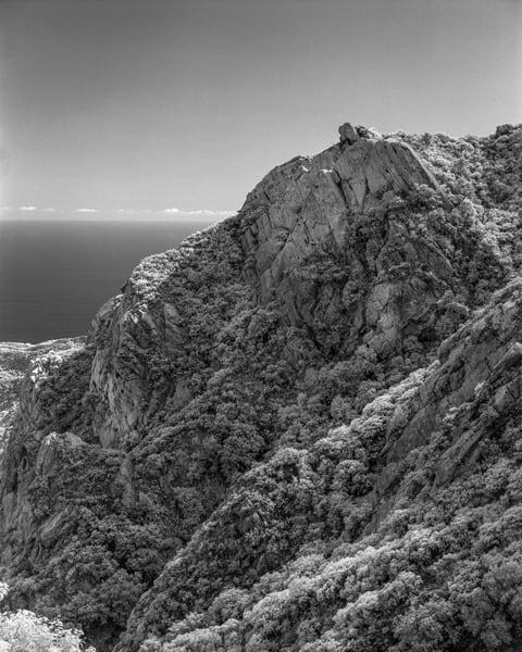 Rambla Pacifico   Malibu Photography Art | Julian Whatley Photography