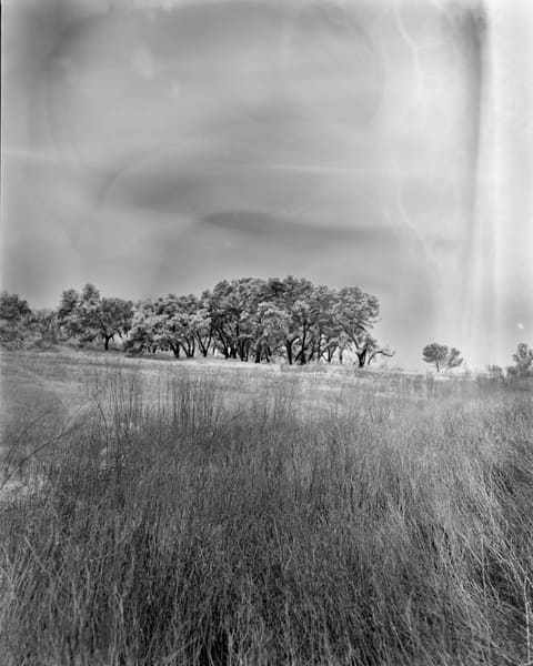 Field And Trees   Malibu Photography Art | Julian Whatley Photography