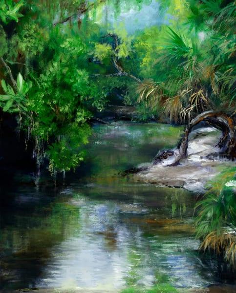 Myakka Tributary South View Art | debherbertart