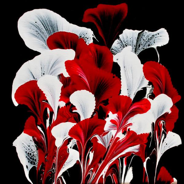 Red Calla Lilies  Photography Art   CJ Harding