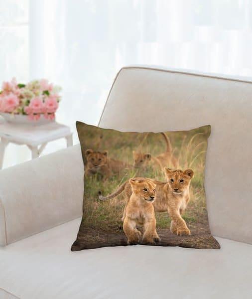 Pillow: ''cub Scouts' 14x14   Carol Brooks Parker Fine Art Photography