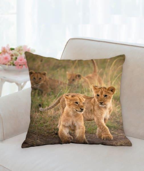 Pillow: 'cub Scouts' 18x18   Carol Brooks Parker Fine Art Photography