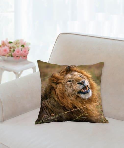 Pillow: 'windblown Lion' 14x14   Carol Brooks Parker Fine Art Photography