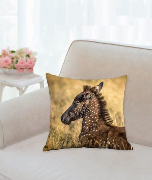 Pillow: 'one In A Million' 14x14   Carol Brooks Parker Fine Art Photography