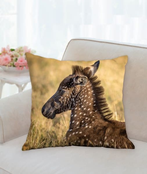 Pillow: 'one In A Million' 18x18   Carol Brooks Parker Fine Art Photography