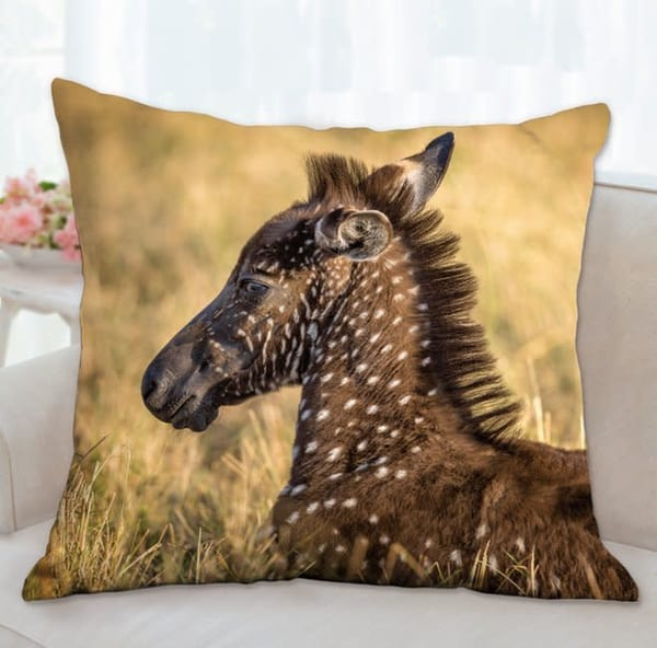 Pillow: 'one In A Million' 26x26   Carol Brooks Parker Fine Art Photography