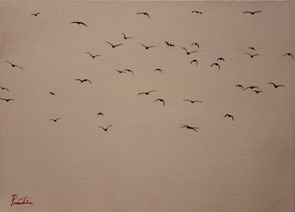 Birds Art | David R. Prentice