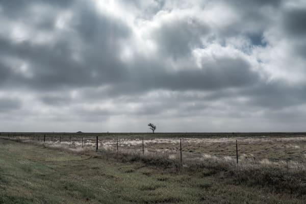 Texas Art | davinart