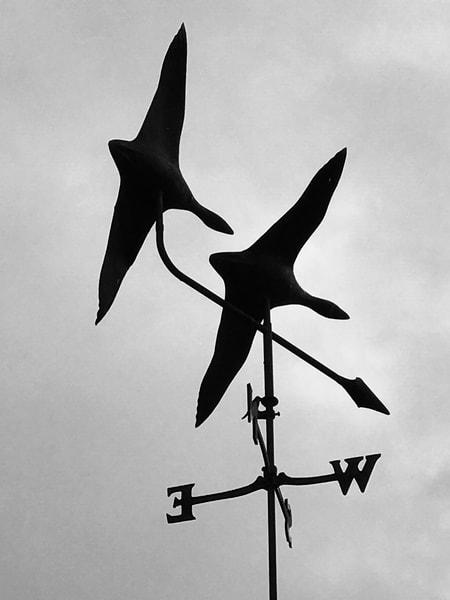 Heading North Windvane Photography Art | Visionary Adventures, LLC