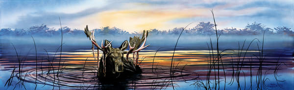 Lake Snoozin' Moose Art Print of life in Yellowstone Park by Joe Ziolkowski