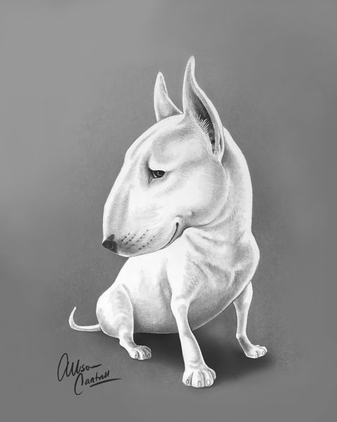 Ebby The Bull Terrier Art | BunnyPigs