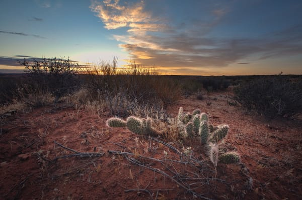 Day Break In The Desert Photography Art | Chad Wanstreet Inc