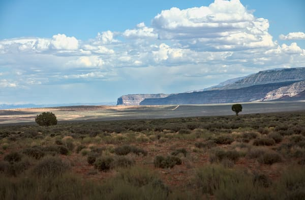 Plains Of Utah Art | Chad Wanstreet Inc
