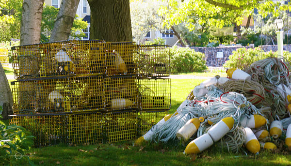 Yellow Traps And Buoys Art | Fred Marco Photography