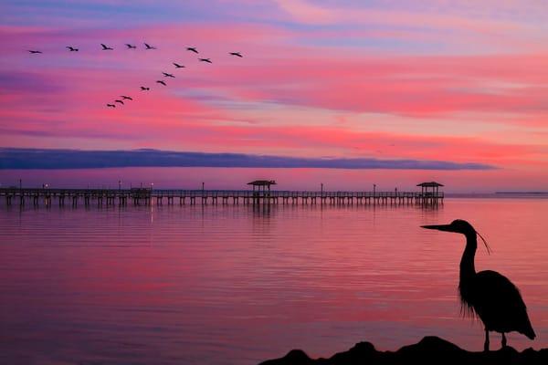 Aransas Bay Blue Photography Art | John Martell Photography
