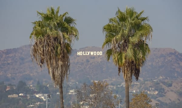 Two Palms In Hollywood Photography Art | Cid Roberts Photography LLC