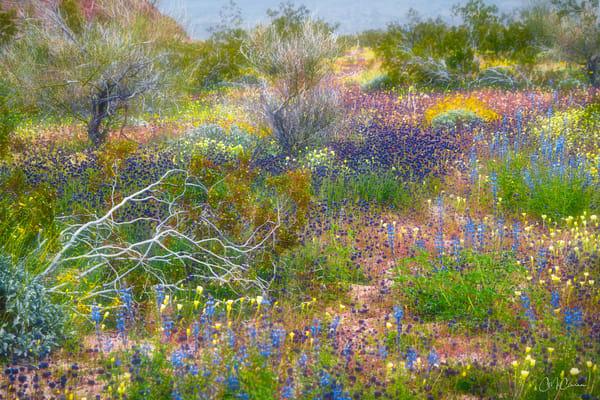 Super Bloom Monet II