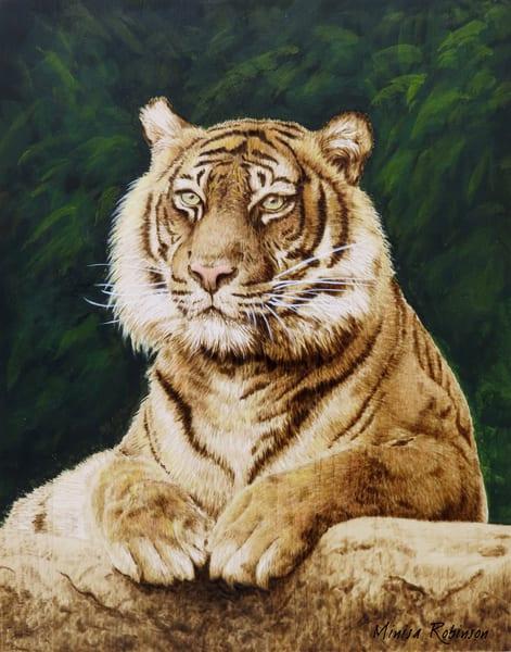 Tiger (Original Woodburning)   Minisa Pyrography