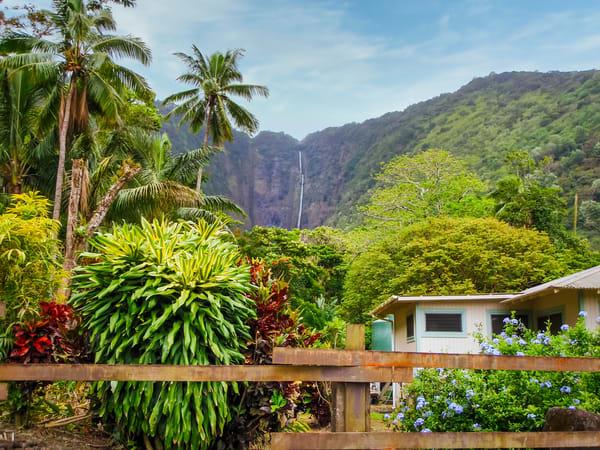 Hawaiian Seclusion