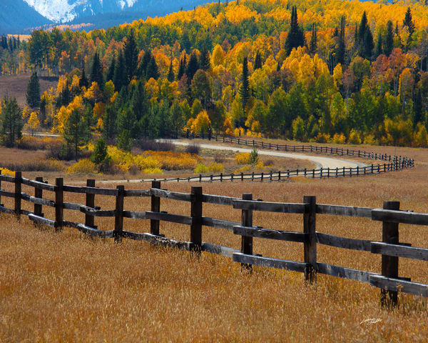 Colorado Fence Line  Photography Art | Whispering Impressions