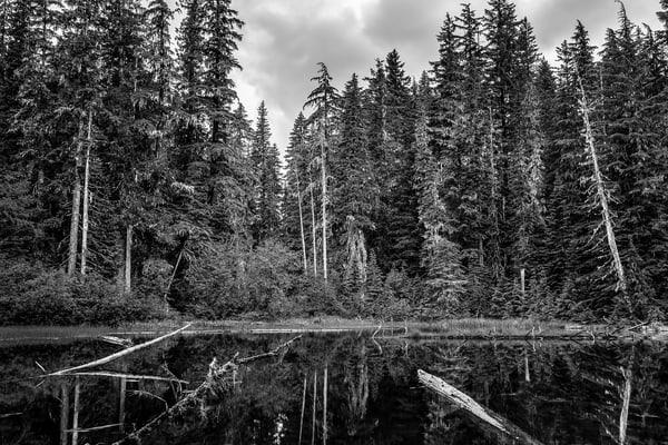 Unknown Lake, Mt Rainier National Park, Washington, 2014