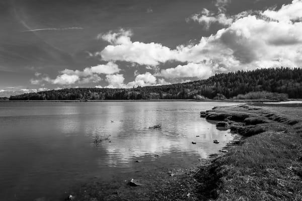 Sunny Winter Day on Oyster Bay No. 2, Thurston County, Washington, 2016