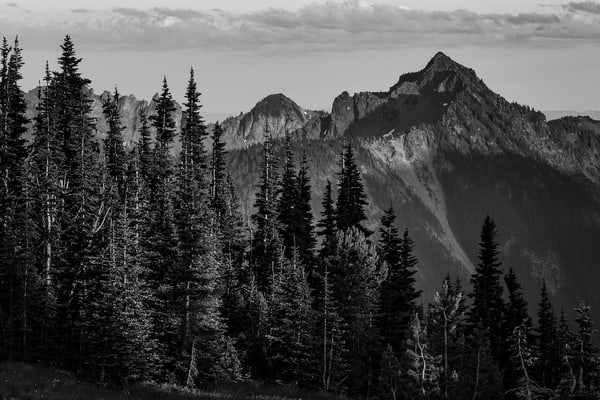 Tamanos Mountain, Mount Rainier National Park, Washington, 2016