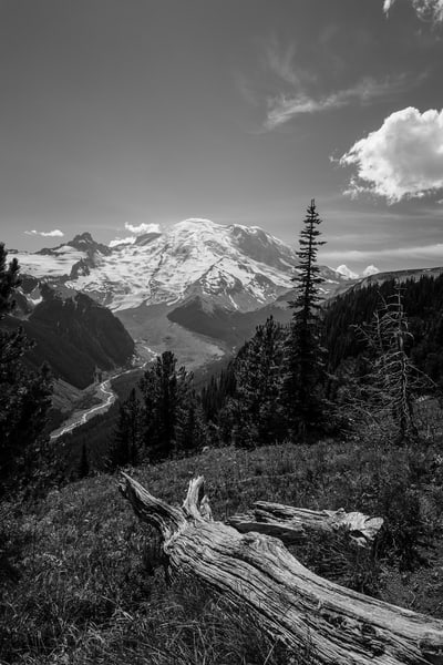 White River Valley, Mount Rainier, Washington, 2016