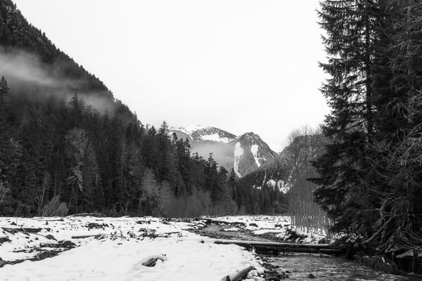 Winter, Carbon River Valley, Mount Rainier National Park, Washington, 2016