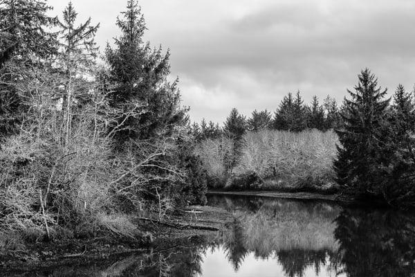 Winter, Jessie Slough, Grays Harbor County, Washington, 2017