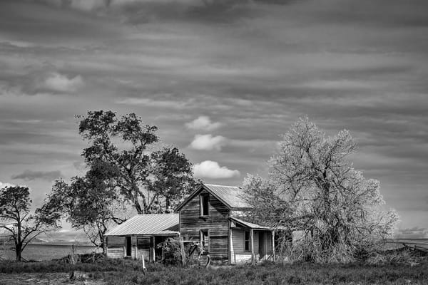 Abandoned Farm, A Road SW, Douglas County, Washington, 2013