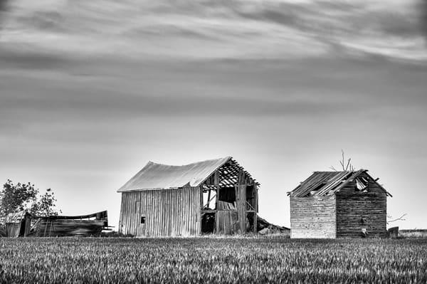 Abandoned Barns, K Road, Douglas County, Washington, 2013