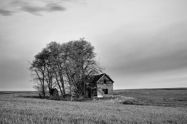 Abandoned House, Douglas County, Washington, 2013