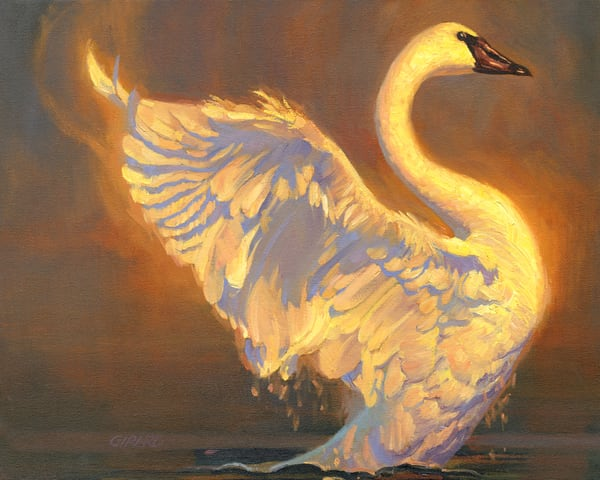 Golden Swan Art | Studio Girard