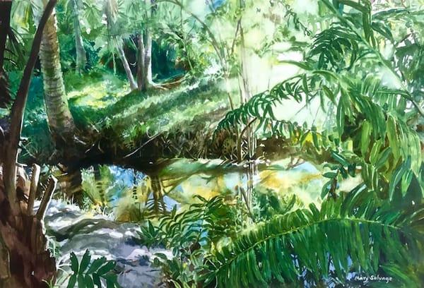 First Light, FIT Botanical Gardens Print