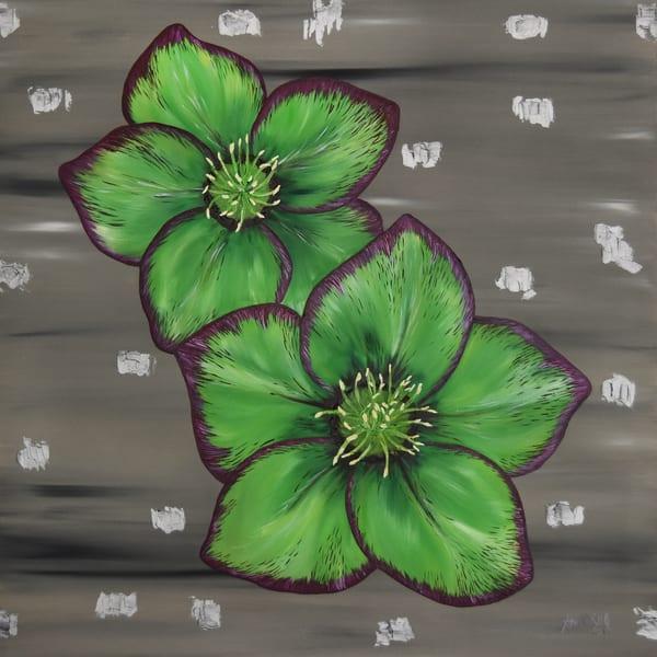 Green Hellebore – Helleborus Original Art - Fine Art Prints on Canvas, Paper, Metal & More