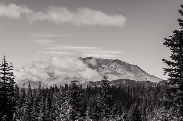 Mount St. Helens, Bear Meadows, Washington, 2014