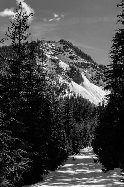 Snow-covered Hogback Ridge from FR1284, White Pass, Washington, 2017