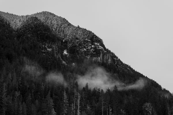 Tirzah Peak, Mount Rainier National Park, Washington, 2016