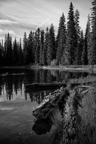 Chain of Lakes, Washington, 2019