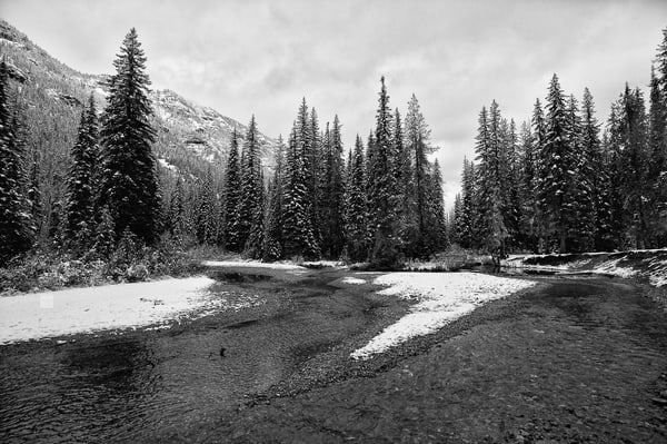 Early Fall Snow, Cle Elum River, Washington, 2012
