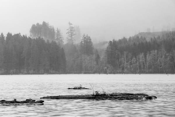 Lake Kapowsin, Washington, 2015