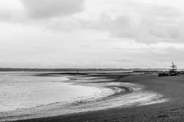 Armstrong Bay, Protection Island, Ocean Shores, Washington, Winter 2017