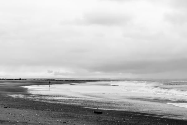 Beach, Protection Island, Ocean Shores, Washington, 2017