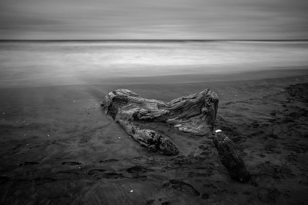 Buried on the Beach, Ocean Shores, Washington, 2014