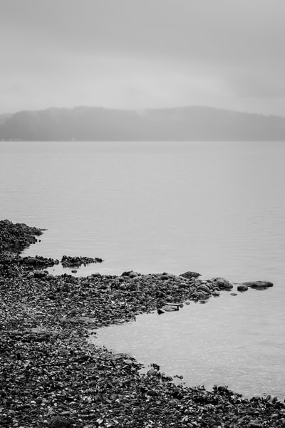 Hood Canal, Triton Cove State Park, Washington, 2014