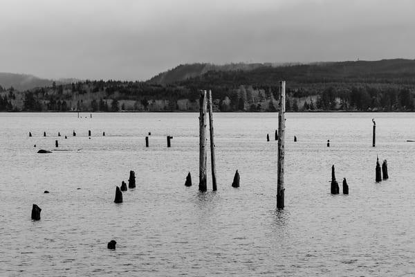 Grays Harbor, Hoquiam, Washington, 2017