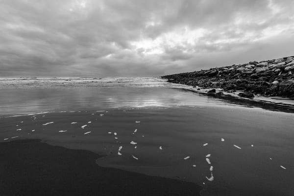 Ocean Beach No. 3, Westhaven State Park, Washington, 2017