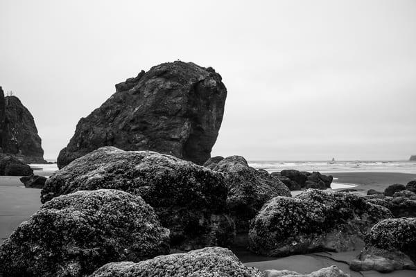 Rocks, Ruby Beach, Olympic National Park, Washington, 2013